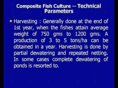 Marine And Inland Fisheries, Prawn Culture And Other Water Based Activities_RD 13 LEC