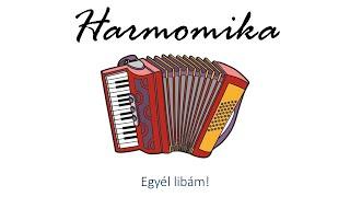 Hangszer ovi - Egyél libám (harmonika) / Hungarian folk children song with animals