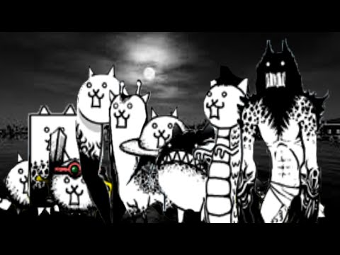 Cat Crazed Dog
