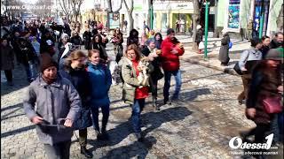 Odessa1.com - Парад спасенных собак