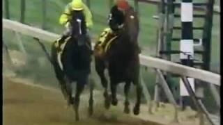 1989 Preakness Stakes - Easy Goer -vs- Sunday Silence