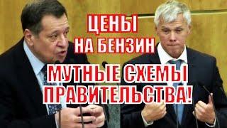 Депутат вскрыл всю правду о действиях правительства по сдерживанию цен на бензин!