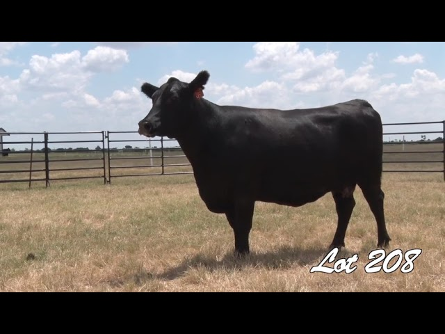 Pollard Farms Lot 208