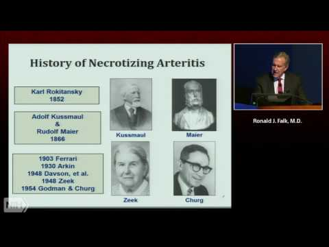 Perspective on autoimmunity: a view from the ANCA vasculitis looking glass