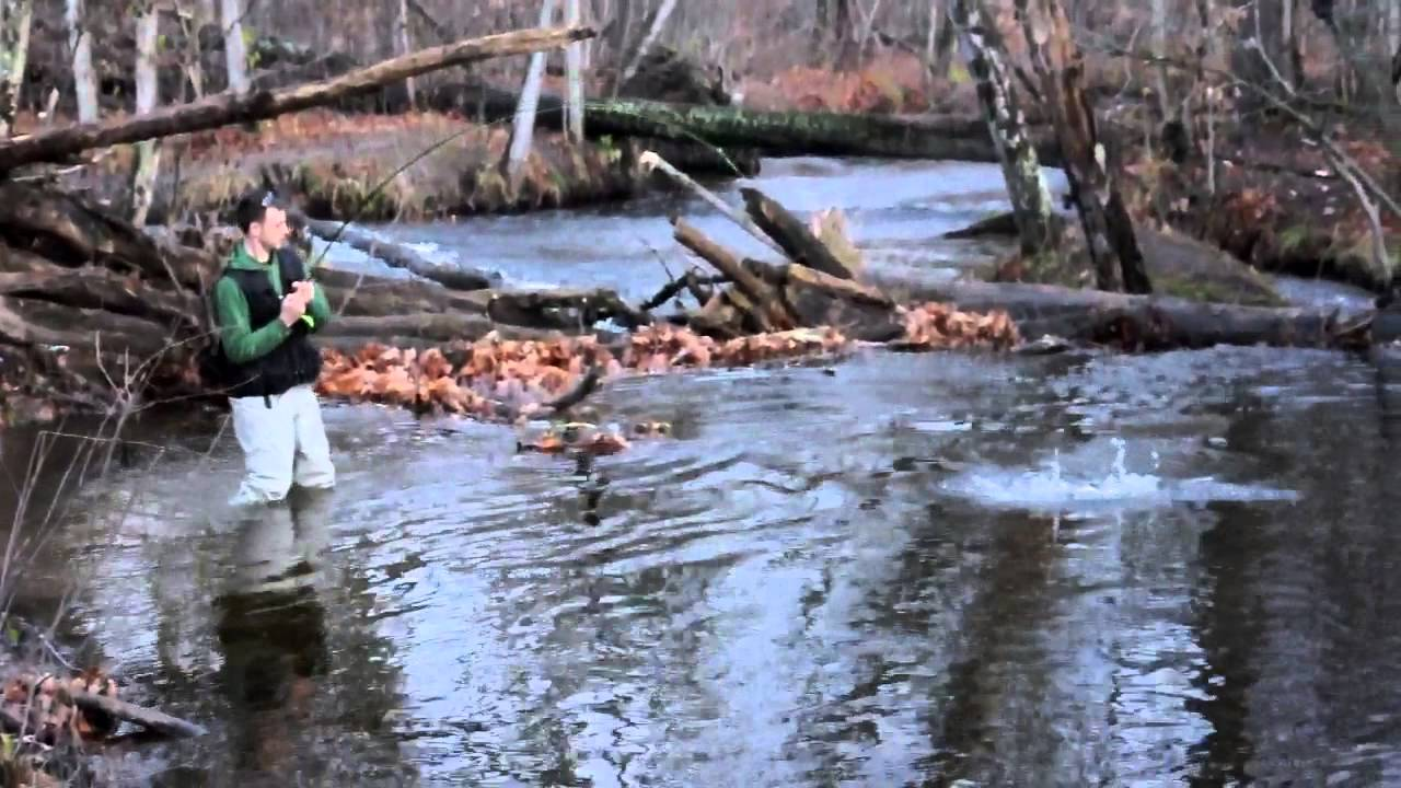 Steelhead fishing at salmon river altmar ny youtube for Salmon river ny fishing