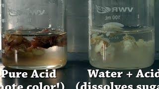 Dissolving Human Bodies! - CHM111 Lab 7