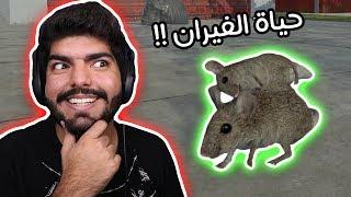 عيش حياة الفئران !! - Rat Simulator