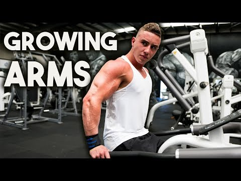 Arms Workout for Mass   Zac Perna