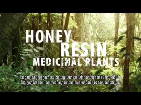 WWF-Cambodia Green Economy
