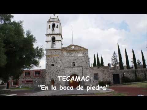 Estado de México  125 Municipios
