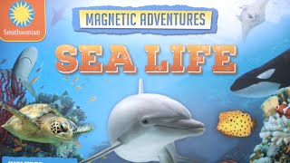 Smithsonian Magnetic Adventures Sea Life from Silver Dolphin