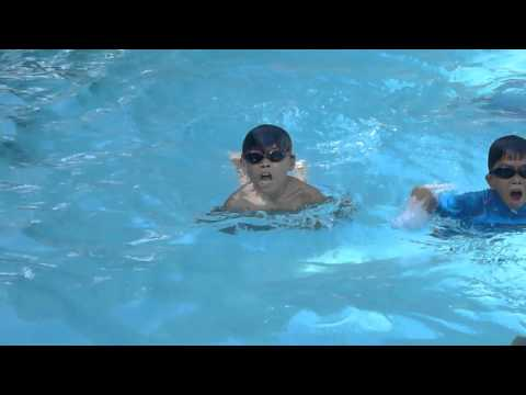 My Son's Swimming Lesson (butterfly Stroke)