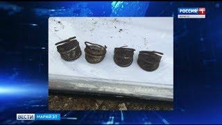 В Марий Эл обнаружили древнее захоронение тел с украшениями - Вести Марий Эл