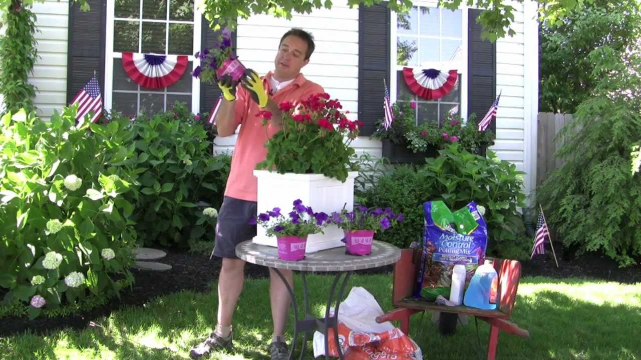 The window box guy 732 895 6262 root bound plant tips deck the window box guy 732 895 6262 root bound plant tips deck planter boxes railing planters baanklon Images