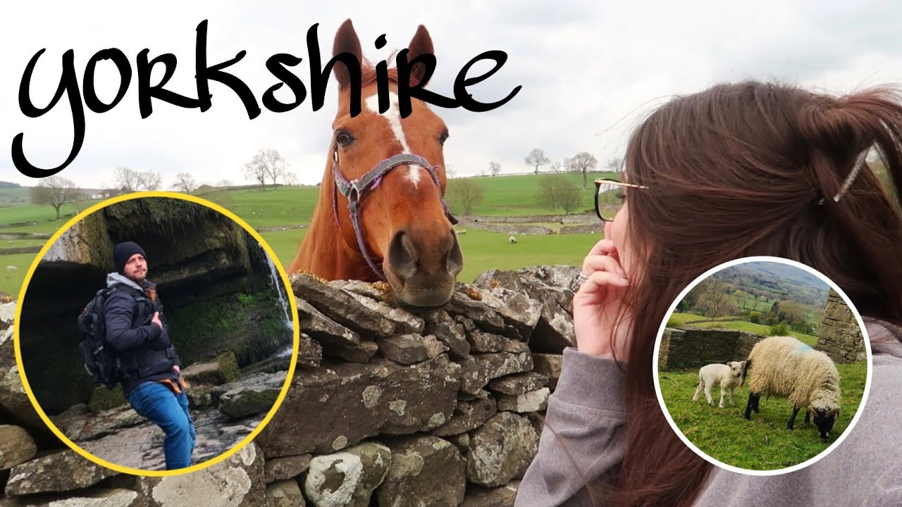 Porteños en la naturaleza 🐏🤦♀️- Juli Sparkling Vlogs