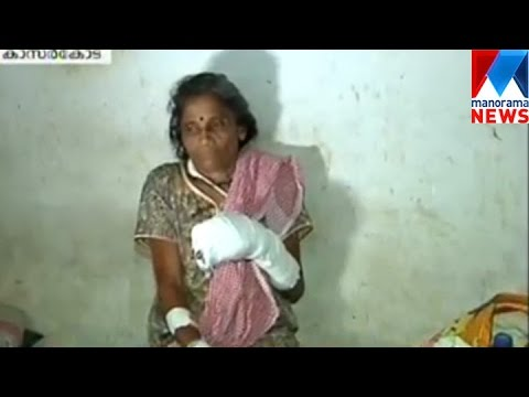 CPM attack housewife in Kasargode   Manorama News