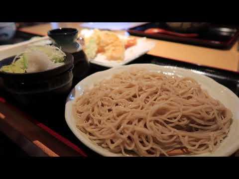 Japan Vlog Day 1 // HELLO TOKYO