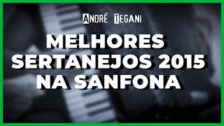 Baixar Sertanejo Universitário | Seleção Sanfona | André Tegani | 2015