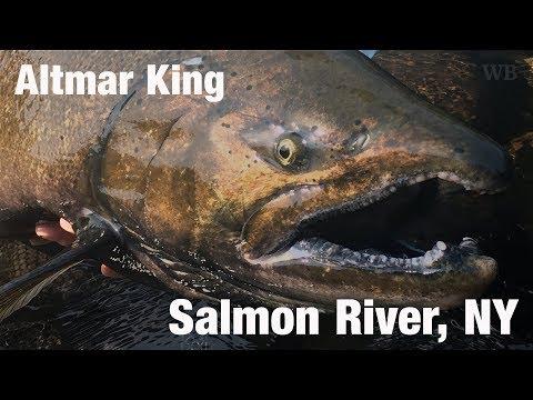 WB - Fly Fishing Altmar King Salmon, Salmon River, NY - September '17