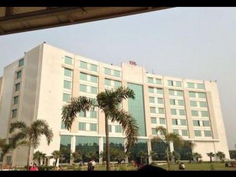 Delhi School Of Business, Delhi | Shiksha.com