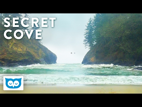 Relaxing Beach Waves - 2 Hours Ocean Wave Sounds at Secret Cove