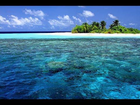 ➤Дикие острова Европы✅приключения про необитаемые острова✅    ТВ документальные фильмы