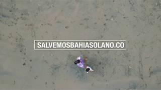 URGENTE: Salvemos Bahía Solano, Chocó - Angélica Casallas