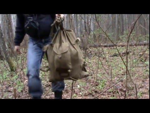 Первые грибы или в лес за сморчками