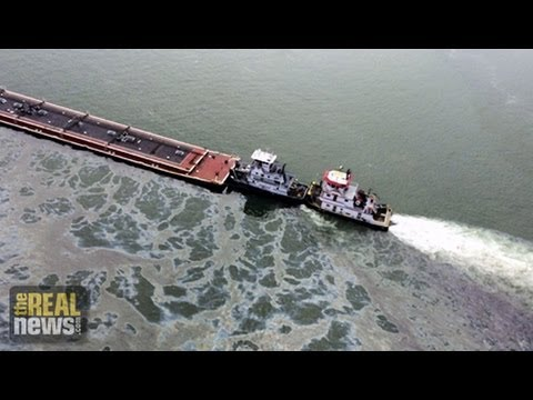 Oil Spill Threatens Wildlife and Local Economy