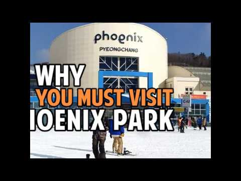 [Trazy] Why You Must Visit Phoenix Park in Korea This Winter