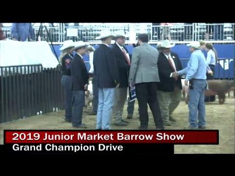 2019 Junior Market Barrow Show- Day 2