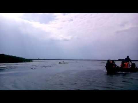 Danube Delta , Romania