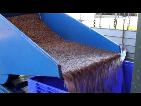 AVK Tigernut Processing