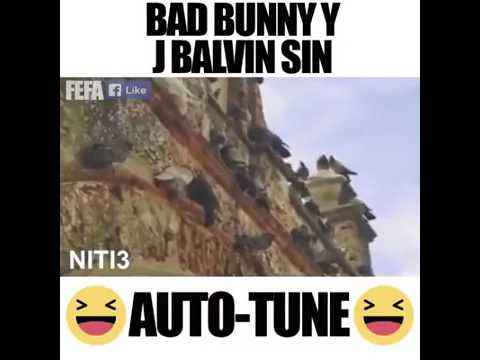 Si tu novio te deja sola - J Balvin FT Bad Bunny (Parodia) Sin AUTO-TUNE