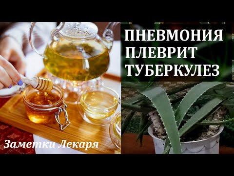 Пневмония плеврит туберкулез Рецепты лечение в домашних условиях
