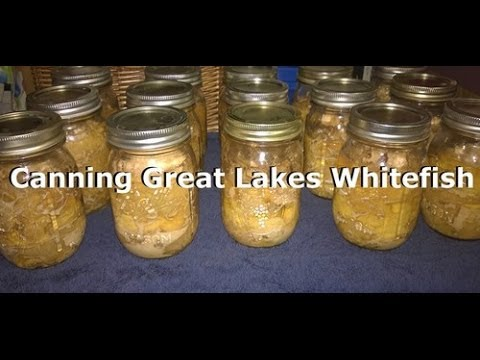 Canning Great Lakes Whitefish