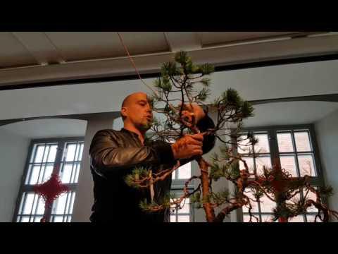 Mauro Stemberger - Demonstration 2016 (Part 2)
