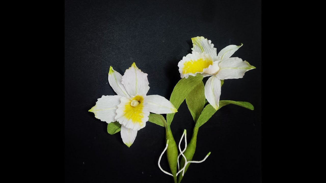 how to make cattleya orchid flower from crepe paper