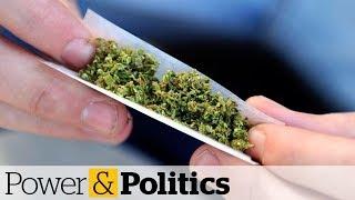 Is Canada underprepared for pot? | Power & Politics