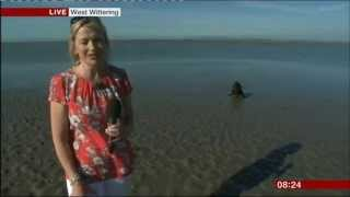 BBC Breakfast 17 July 2014 - Carol Kirkwood upstaged by dog