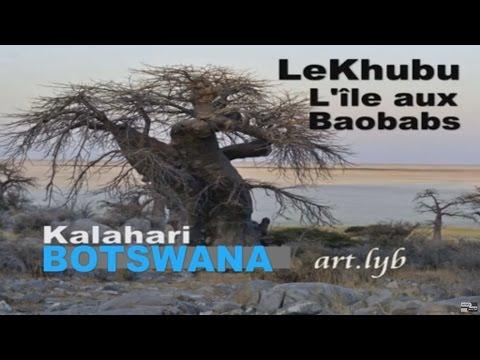 BOTSWANA Kalahari art.lyb