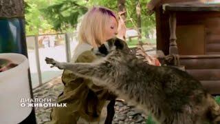 """""""Диалоги о животных"""". 14.01.2017г."""