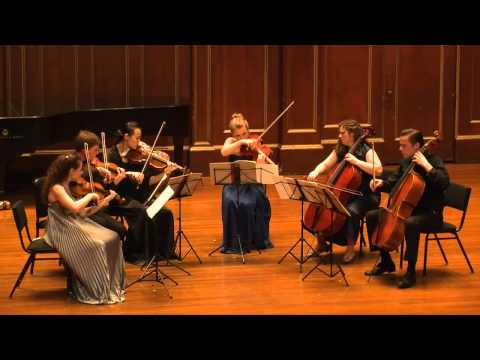 Arnold Schoenberg - Transfigured Night for String Sextet, Op. 4