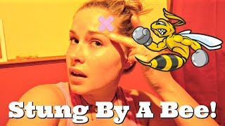 I GOT STUNG BY A BEE!