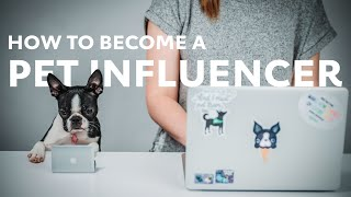How to become a Pet Influencer | Quick Tips | Rover.com