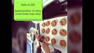 Vegan, Gluten Free, Grain Free Peanut Butter Cookies