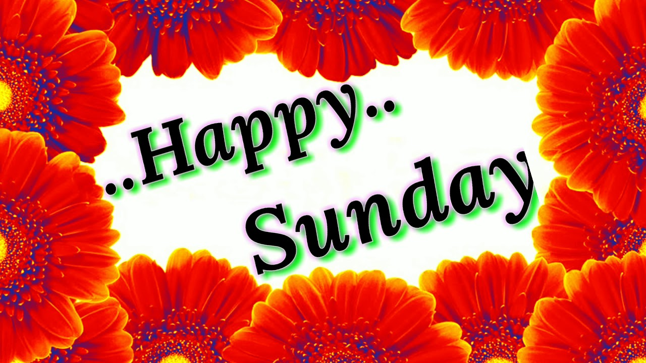 Good Morning Video Happy Sunday Greetings Massage Wishes Love