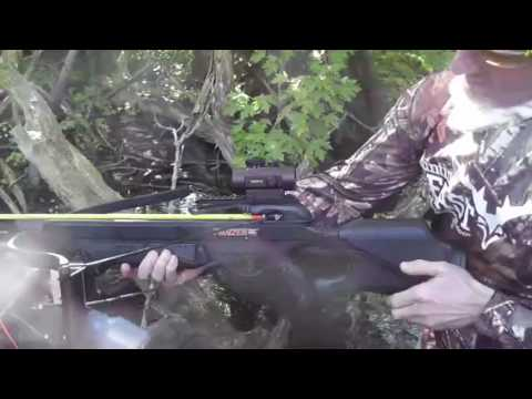 Crossbow Carp Stalking