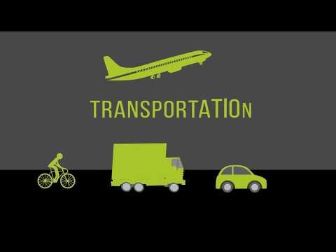 Transportation 101