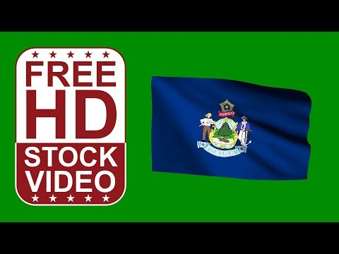 FREE HD video backgrounds –NASA logo flag waving on green